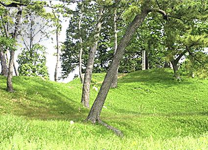 矢作(やはぎ)川流域の古墳時代前期を代表する古墳群
