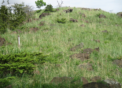 山の尾根に分布する積石塚と土石混合墳からなる6~7世紀の群集墳で、 その総数は38基というが、そのうちの24基が愛知県指定史跡として保存。